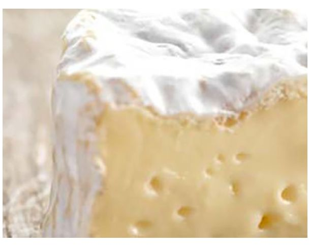 Le Camembert, made in Normandie