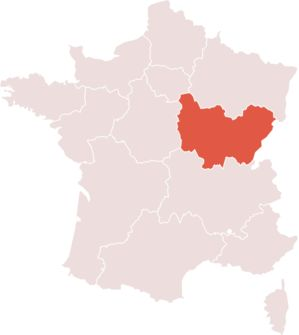Carte Fromage : Mont d'Or AOP (AOP)