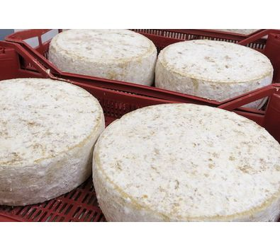 Fabrication: Tomme de Rilhac